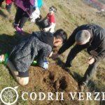 Ocolul Silvic Codrii Verzi sarbatoreste Luna Padurii plantand copaci