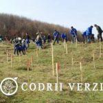 Voluntari participanti la actiunea de impadurire a Ocolului Silvic Codrii Verzi din 2016