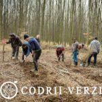 Studenti ai universitatii Babes Bolyai in practica la Ocolul Silvic Codrii Verzi