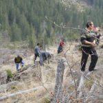 Ocolul silvic Codrii Verzi are nevoie de voluntari pentru operatiunea de impadurire din 2018
